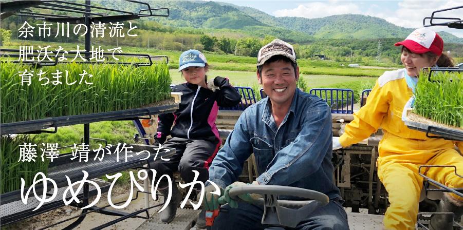 藤澤 靖が作った ゆめぴりか 余市川の清流と肥沃な大地で育ちました