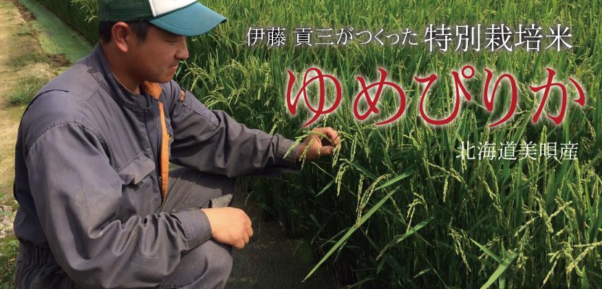 伊藤 貢三がつくった特別栽培米 ゆめぴりか 北海道美唄産