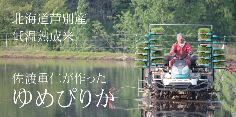 北海道芦別産 低温熟成米 佐渡重仁が作ったゆめぴりか
